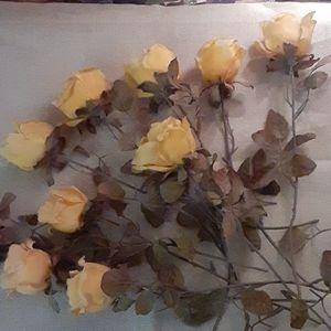 3/$25 Yellow Roses